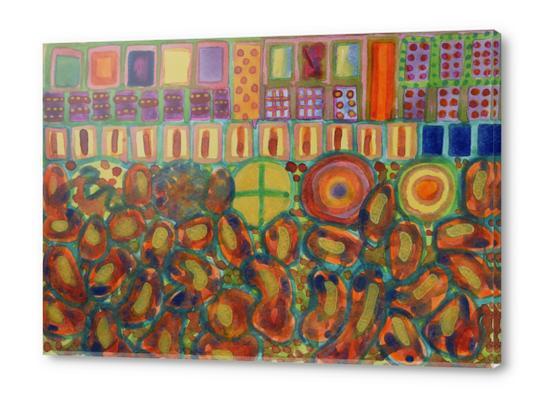 Decorated and illuminated House  Acrylic prints by Heidi Capitaine