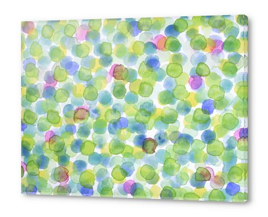 Dotted Summer Pattern Acrylic prints by Heidi Capitaine