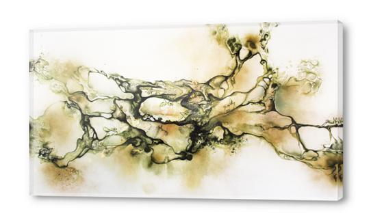 Swarm Acrylic prints by darling