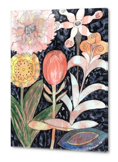 Mixed Flowers with Tulip on Black  Acrylic prints by Heidi Capitaine