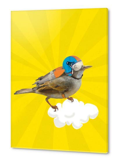 Rocket Bird Acrylic prints by tzigone