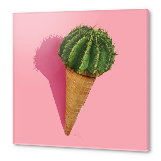 Caramba Cacti Acrylic prints by Nettsch