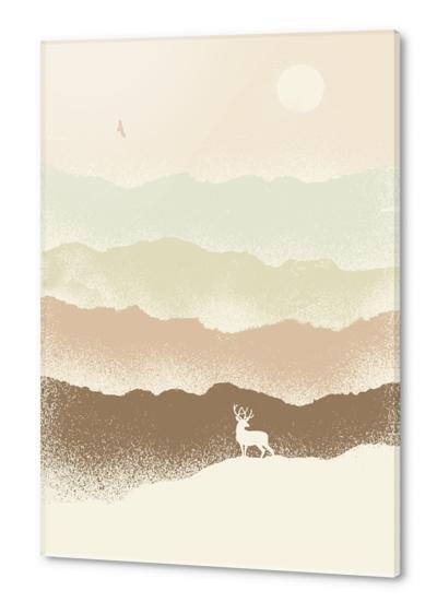 Quietude Acrylic prints by Florent Bodart - Speakerine