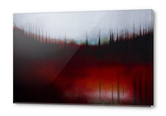 FOREST SOUND Acrylic prints by db Waterman