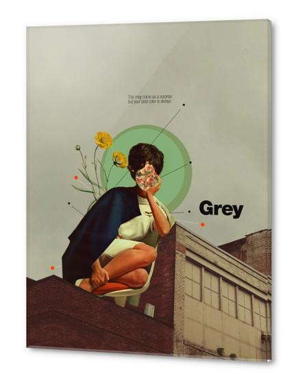 Grey Acrylic prints by Frank Moth