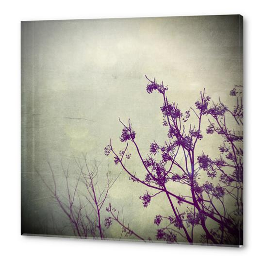 It Takes Two Acrylic prints by Trish Mistric