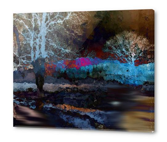 Nuit Acrylic prints by jacques chiron