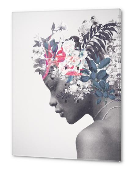Memento Acrylic prints by Frank Moth