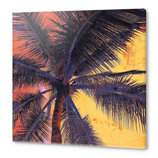 Palm Tree Sunset Acrylic prints by Irena Orlov