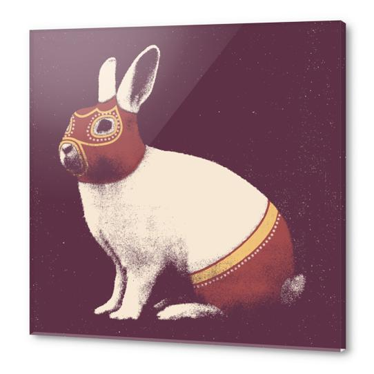 Lapin Catcheur (Rabbit Wrestler) Acrylic prints by Florent Bodart - Speakerine