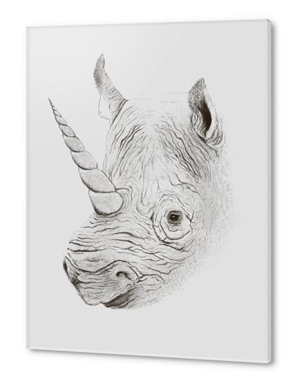 Rhinoplasty Acrylic prints by Florent Bodart - Speakerine