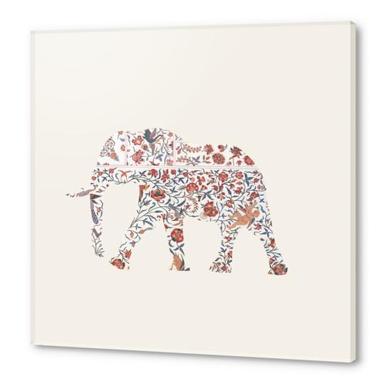 Elephant Acrylic prints by Oleg Borodin