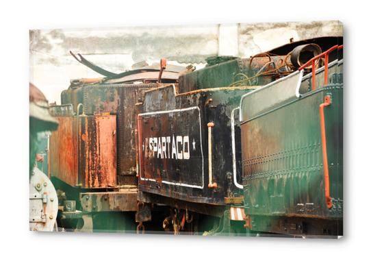Train Cemetery Acrylic prints by fauremypics