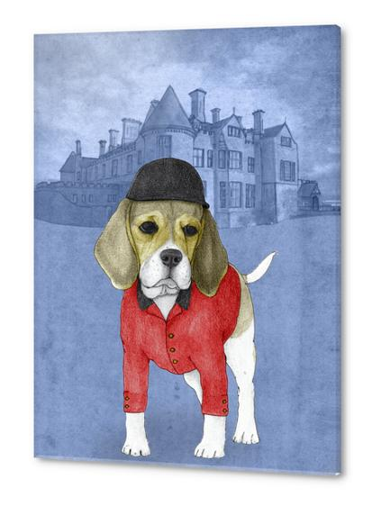 Beagle Acrylic prints by Barruf