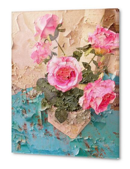 Roses de Lourmarin Acrylic prints by Ivailo K