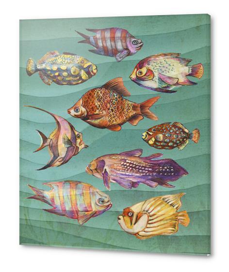 Fishes Acrylic prints by Georgio Fabrello