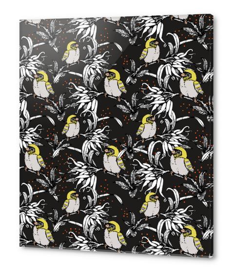 Night garden of exotic birds Acrylic prints by mmartabc
