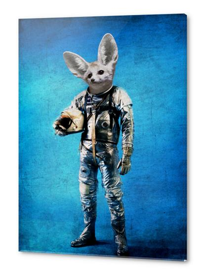 Fennec the captain Acrylic prints by durro art
