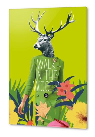 Walk in the woods Acrylic prints by Alfonse