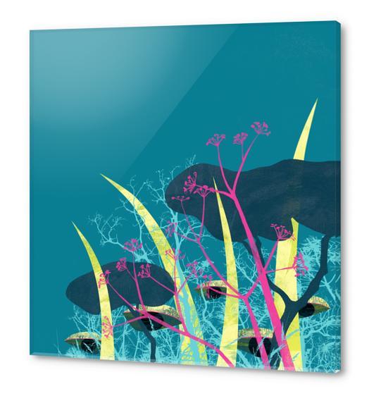 la foresta di circe Acrylic prints by junillu