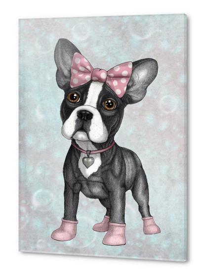 Sweet Frenchie Acrylic prints by Barruf