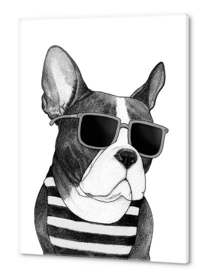 Frenchie Summer Style bw Acrylic prints by Barruf