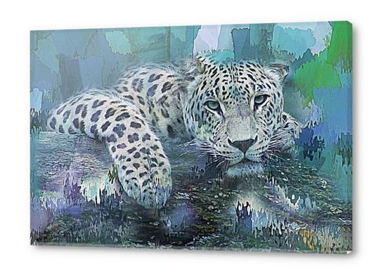 Leopard Acrylic prints by Galen Valle