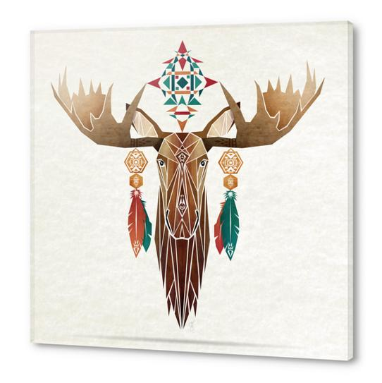 moose Acrylic prints by Manoou