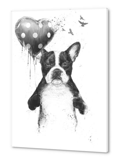 My heart goes boom Acrylic prints by Balazs Solti