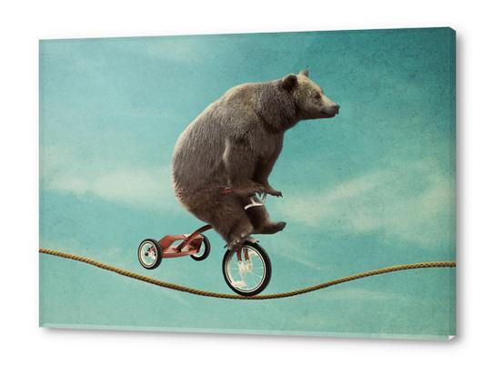 Balancing  Act Acrylic prints by Seamless