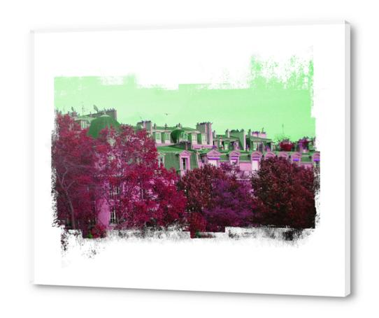 Roofs in Montmartre Acrylic prints by Malixx