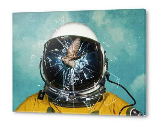 the escape 2 Acrylic prints by Seamless
