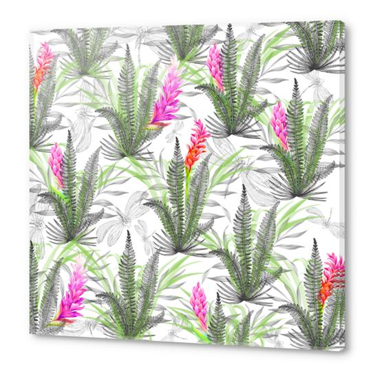 Nature pattern with dragonflies Acrylic prints by mmartabc