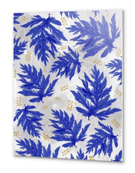 Coral Blue Metal prints by mmartabc
