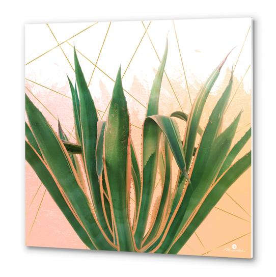 Cactus with geometric Metal prints by mmartabc