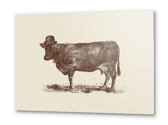 Cow Cow Nut Metal prints by Florent Bodart - Speakerine