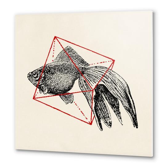 Fish In Geometrics III Metal prints by Florent Bodart - Speakerine