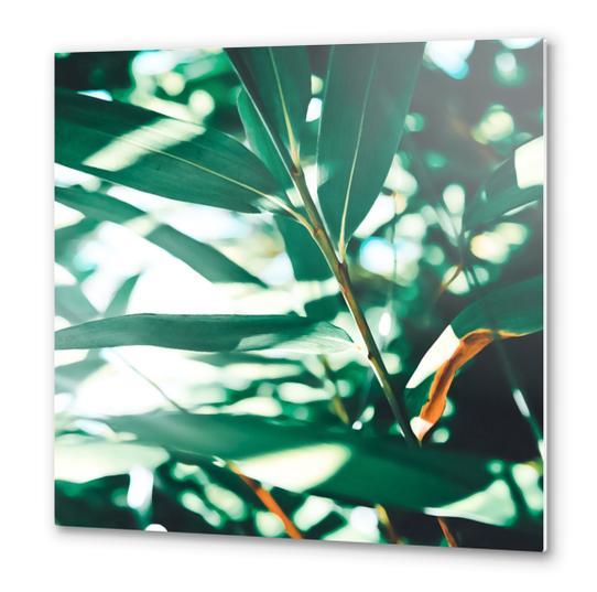 Love leaf Metal prints by mmartabc