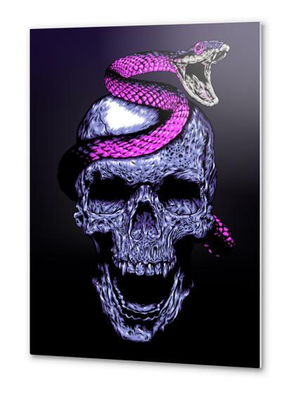 Skull and Snake Metal prints by Jordygraph