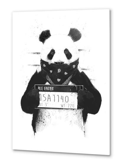 Bad panda Metal prints by Balazs Solti