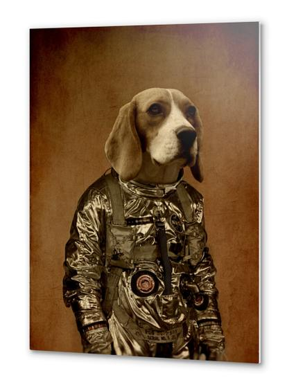 Beagle Metal prints by durro art