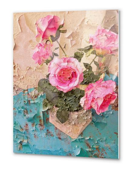 Roses de Lourmarin Metal prints by Ivailo K