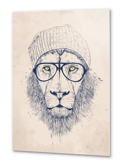 Cool lion Metal prints by Balazs Solti