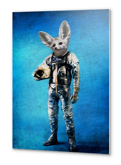 Fennec the captain Metal prints by durro art