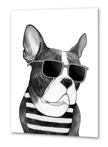Frenchie Summer Style bw Metal prints by Barruf