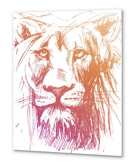 Lion Metal prints by Georgio Fabrello