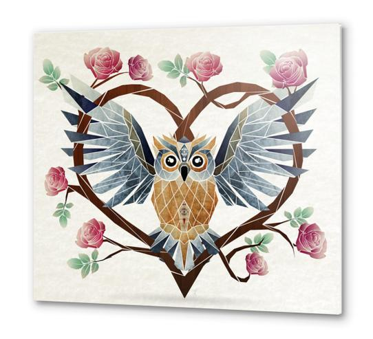 lovely owl Metal prints by Manoou