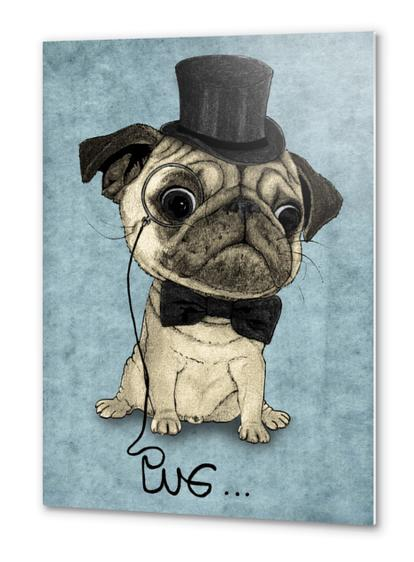 Pug; Gentle Pug Metal prints by Barruf