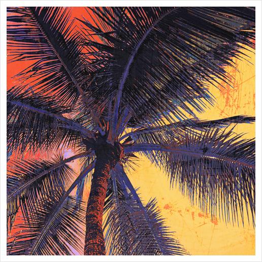 Palm Tree Sunset Art Print by Irena Orlov
