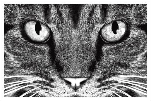 The Cat Art Print by Tummeow